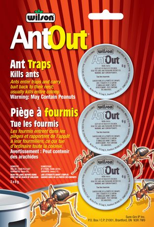 wilson ant out bait instructions