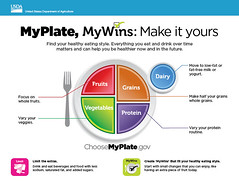 The usda food guide myplate plan